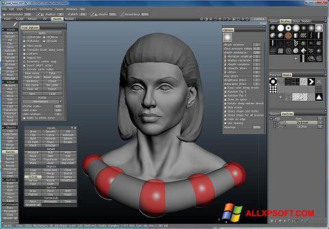 স্ক্রিনশট 3D-Coat Windows XP