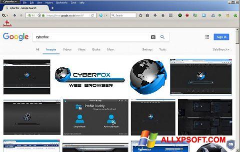 স্ক্রিনশট Cyberfox Windows XP