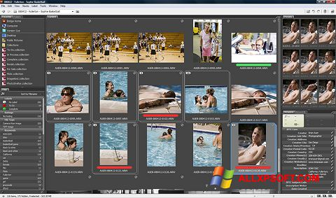 স্ক্রিনশট Adobe Bridge Windows XP