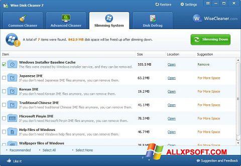 স্ক্রিনশট Wise Disk Cleaner Windows XP