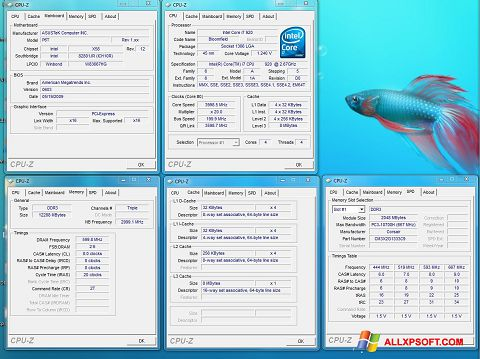 স্ক্রিনশট CPU-Z Windows XP