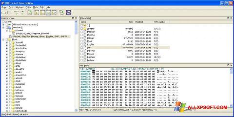 স্ক্রিনশট DMDE Windows XP